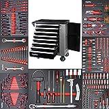 Mephisto Werkzeugwagen Werkstattwagen mit 8 Schubladen davon 7 mit Werkzeug wie Schraubenschlüssel,...
